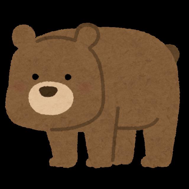 animal_bear_character.png