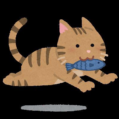 cat_fish_run.png