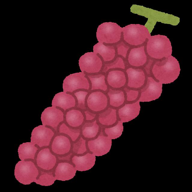 fruit_grape_kousyu.png