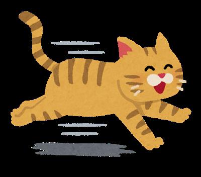run_cat_smile.png